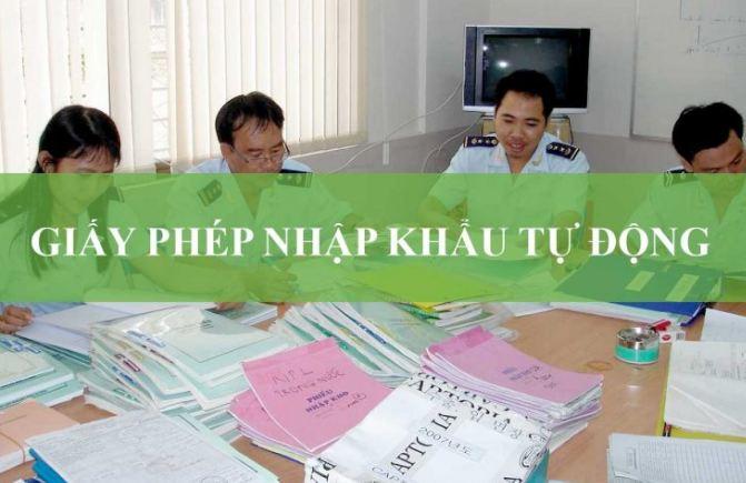 Quy trình cấp giấy phép nhập khẩu tự động