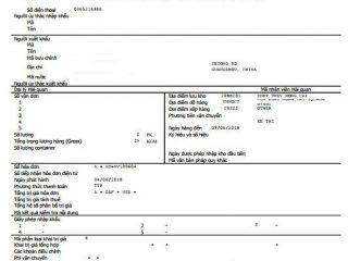 Xử lý các tờ khai hải quan bị lỗi trên Hệ thống hải quan