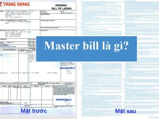 master bill là gì