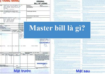 Master Bill (MBL) là gì? phân biệt MBL và HBL