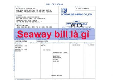 Seaway bill là gì? Cách sử dụng seaway bill
